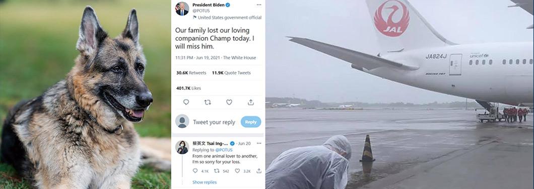 左圖擷取自2021年6月20日的Twitter@President Biden,美國總統拜登於推特上宣布愛犬「冠軍」(Champ)離世,蔡英文當日回覆道:「同樣身為動物愛好者,我對你痛失愛犬感到遺憾。」右圖擷取自2021年6月4日謝長廷臉書,當天日本將日人不願施打的AZ疫苗提供給臺灣,謝長廷在風雨中,對著運送疫苗的航班鞠躬哈腰,情溢於表。臺獨政客抗疫無能又拒絕大陸協助,不但無法解民於倒懸,卻抓緊時機諂媚美日。